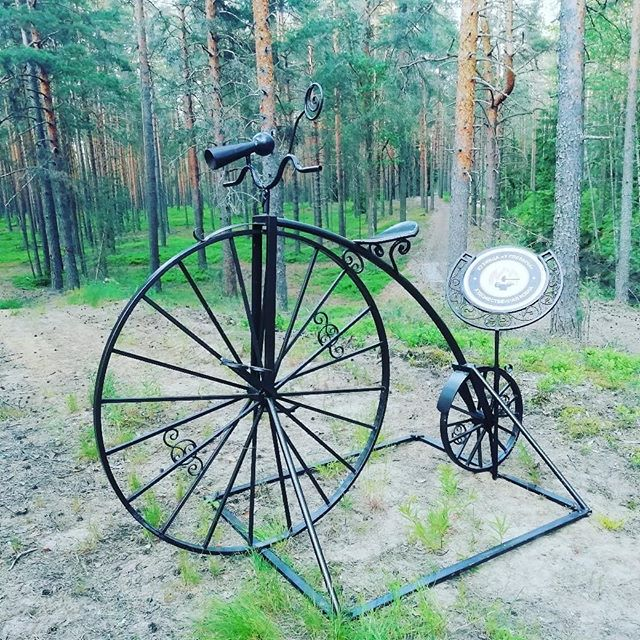 Наш кованый велосипед переехал в заповедный лес. #велосипед #переехал #заповедный #лес